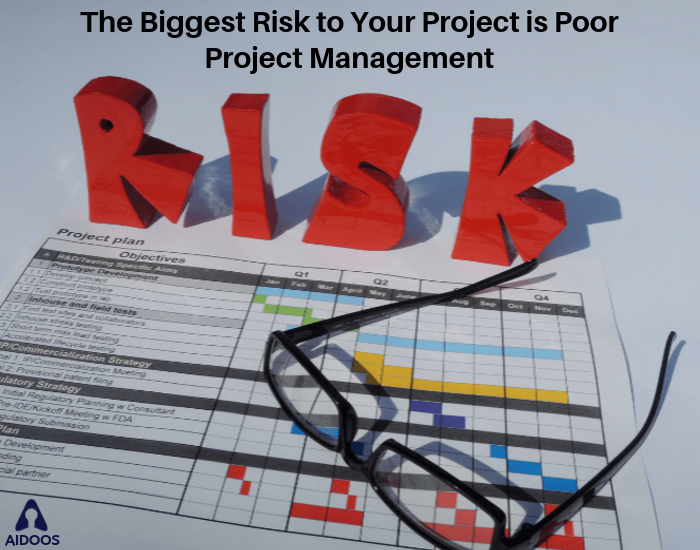 The Biggest Risk to your Project is Poor Project Management
